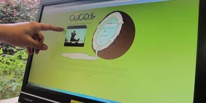 Coco.fr le chat gratuit sur internet